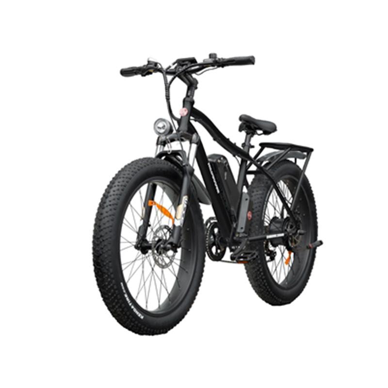 Wild Goose vélo Électrique Fat Bike