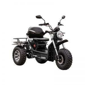 Vtt électrique 3 roues Boomer Beast 2WD aATV Deluxe Daymak